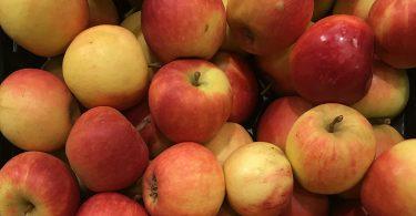Apfel (Symbolfoto)